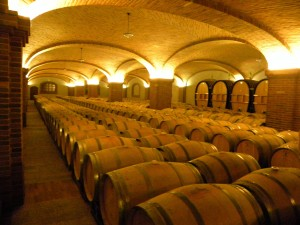 La Cave a la Paolo Scavino winery.